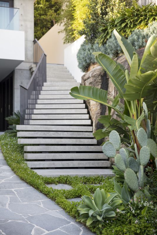 Cantilevered-Concrete-Staircase-Softened-With-Lush-Landscaping