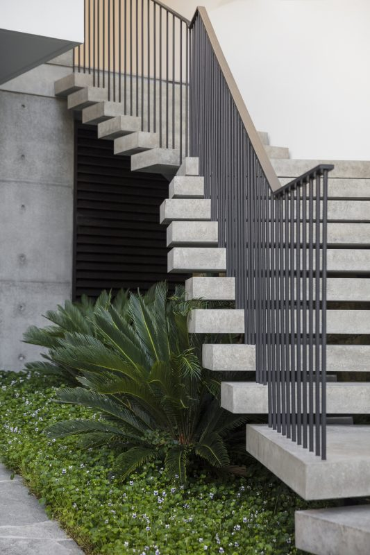 Accent-Planting-Features-Below-Floating-Concrete-Staircase