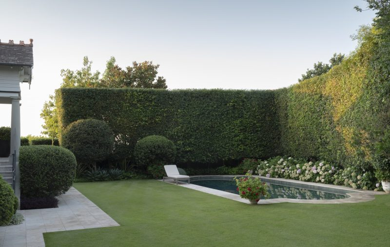Rear-Garden-with-Pool-Hedge